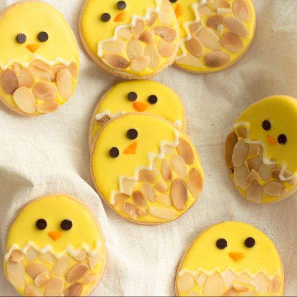 Little Chick Sugar Cookie (2)
